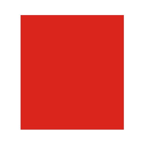 Gołąb - zabezpieczenia przed gołębiami Wrocław